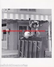 Orig Photo Phyllis Diller Did You Hear The One About The Traveling Saleslady? #1