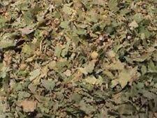Lindenblüten silber 100 g  getrocknet Lindenblütentee