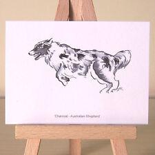 AUSTRALIAN SHEPHERD ACEO Arte Carta di una carta carbone Aussie DOG