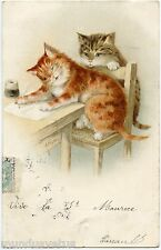 CHATS HUMANISéS. NICE CATS HUMANIZED. L'éCRITURE. THE WRITTER.  AF. LYDON