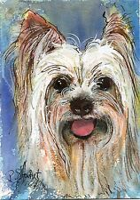Long Haired Yorkie Dog Pink Tongue 5x7 WC Pen Ink orig #painting Penny StewArt