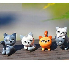 FD3539 Miniature Dollhouse Garden Craft Fairy Bonsai Decor Angry Cat Kitten~ x1♫
