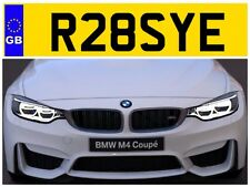 R28 SYE ROSE ROSES ROSIE ROSIES ROSS ROSSY ROS PRIVATE NUMBER PLATE ROSSI POLO