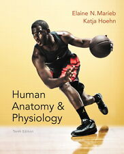 Human Anatomy and Physiology 10E by Katja Hoehn and Elaine N. Marieb (GE)