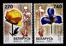Das Rote Buch. Blumen. Trollblume, Schwertlilie. 2W. Weißrußland 2003