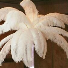 White 10PCS Ostrich Feathers Nature Feathers 40-45CM/16-18inch Party Decoration