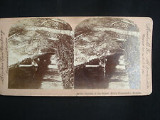 MONACO GARDEN OF THE PRINCE photo keystone stereo view 1900