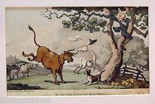 ENGRAVING DR.SYNTAX  ROWLANDSON  DR.SYNTAX  PURSUED BY BULL  ACKERMANS 1813