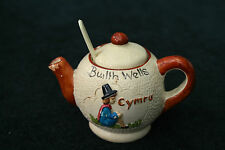 Manor Ware Builth Wells Teapot With Lid And Spoon
