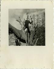 PHOTO ANCIENNE - VINTAGE SNAPSHOT - HOMME PERCHÉ ARBRE FORÊT DRÔLE - TREE FUNNY