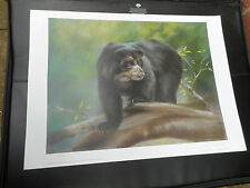 JOEL KIRK LARGE LIMITED EDITION PRINT BLACK GRIZZLY BEAR 2 VGC LOW POST
