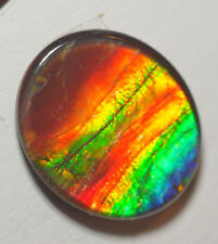 Ammolite Triplet Gemstone, 14x12 mm.