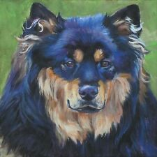 Finnish lapphund portrait dog art CANVAS PRINTof lashepard painting 8x8""