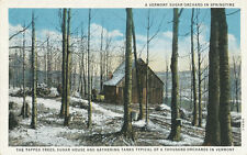 VT * Maple Sugar House & Tanks  1940s * Maple Syrup
