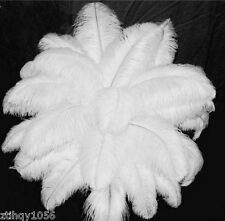 New fashion 100pcs 8-10inch/20-25cm white ostrich feathers for decor wedding