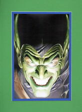 GREEN GOBLIN PRINT PROFESSIONALLY MATTED Alex Ross Spider-Man