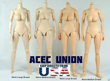 1/6 Female Nude Figure Body Large Breast Pale Skin Tone N001 - U.S.A. SELLER