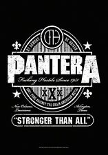 "PANTERA bandiera/bandiera ""Stronger than all"" POSTER BANDIERA"