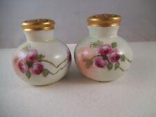 Vintage Pair of Unmarked Germany Austria Salt & Pepper Shakers Pink Roses