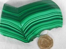 12) Malachite Green Polished Banded Slice Crystal  Mineral Congo Copper 128g