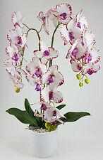 Orchidee Kunstpflanze Kunstblume 3 Zweige mit Topf Deko Pflanze Weiss-Rot K302