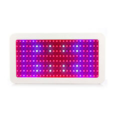 2000W Double Chips LED Grow Light for Hydroponic Medical Indoor Plant Growing