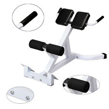 45° Extension Hyperextension Back Exercise AB Bench Roman Chair Training Fitness