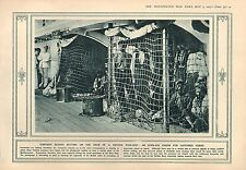 1915 WWI PRINT ~ OPEN-AIR PRISON CAPTURED TURKS BEHIND NETTING BRITISH WARSHIP