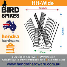 Bird Spikes WIDE Base SS - *10metres* BULK BUY - Fast and Free Postage