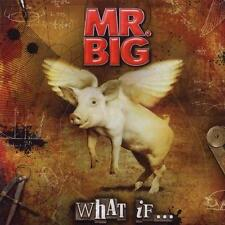 CD + DVD What if... di Mr Big (2011)