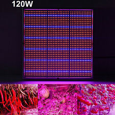 120W IR Full Spectrum 1365 LED Grow Light Panel Pour médical Usine Fleur Indoor