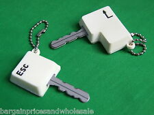 2X Enter & Esc KEY CAPS CAP TOP COVERS TAGS ID MARKERS MARKER KEYRING