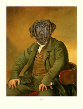 """MASTIFF OLD ENGLISH DRESSED DOG ART PRINT - """"The Squire"""" by Thierry Poncelet"""