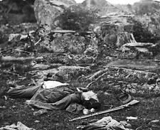 New 8x10 Civil War Photo: Confederate Dead in the Devils Den after Gettysburg