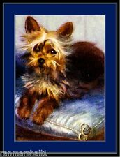 English Print Yorkshire Terrier Pup Dog Art Picture