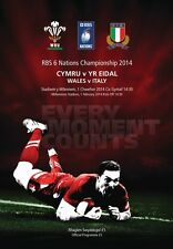 * WALES v ITALY - RUGBY 6 NATIONS PROGRAMME (1st February 2014) *