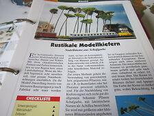 Modellbahn Schritt für Schritt 4 B Bäume Nadelbäume Kiefern aus Schafgarbe