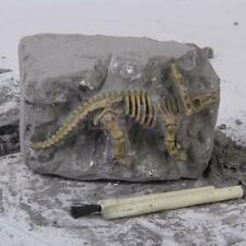 """3.7"""" Mini Dinosaur Skeleton Fossil Excavation Kit DIG IT OUT Kids Party Toy"""