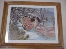 ruffed grouse hunting picture framed