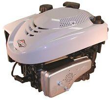 Briggs & Stratton Motor für Rasenmäher 650 Series 190cc  25 / 80 mm Kurbelwelle