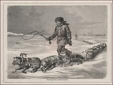 DOG SLEDS, Great Lakes, antique engraving, original 1871