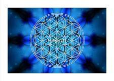 Energie Bild - Die Blume des Lebens - Schutz des Energiefeldes - Meditationsbild