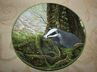 Royal Doulton ' The Badger On His Evening Prowl ' Decorative Plate No. 8243 A