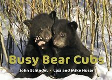Busy Bear Cubs (A Busy Book) by Schindel, John
