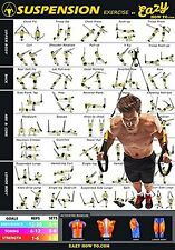 Eazy How To Suspension Exercise Workout Poster BIG 20x28 Endurance Tone Strength
