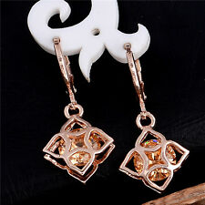 Jewelry 18K Rose Gold Filled Cubic Zirconia Lady's Drop Hoop Earrings