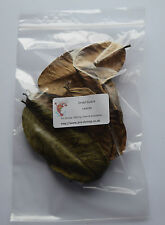 10x Dried Guava Leaves - Natural Food for Shrimp Betta Discus Antibacterial