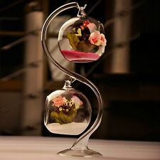 2Pcs 8cm Hanging Glass Flowers Plant Vase Stand Holder Terrarium Container OE