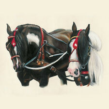 Appleby Horse Fair by K. Fejes ~ Gypsy Vanner ~ Cob Team Fine Art Note Cards -