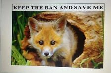 Keep The Ban On Foxhunting